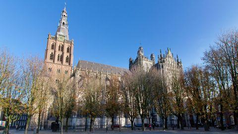 Kerststal Sint-Janskathedraal