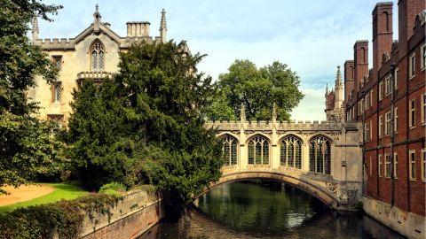 Oxford & Cambridge Universities
